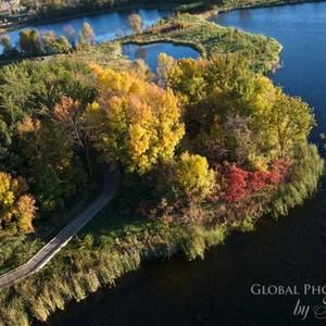 fall-colors-3-300?v=1