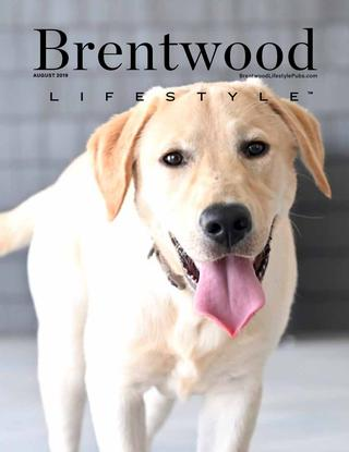Brentwood Lifestyle 2019-08