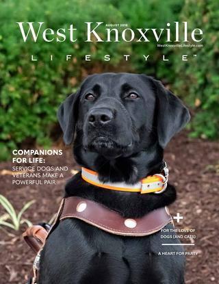 West Knoxville Lifestyle 2019-08